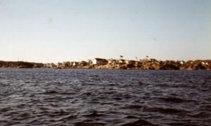 skanna0046